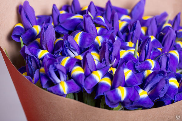 buket-muzhchine-irisi-foto-dostavka-tsvetov-ribinsk-vk